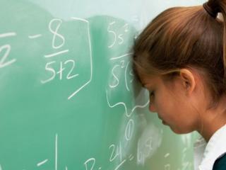 Los estudios: educación básica